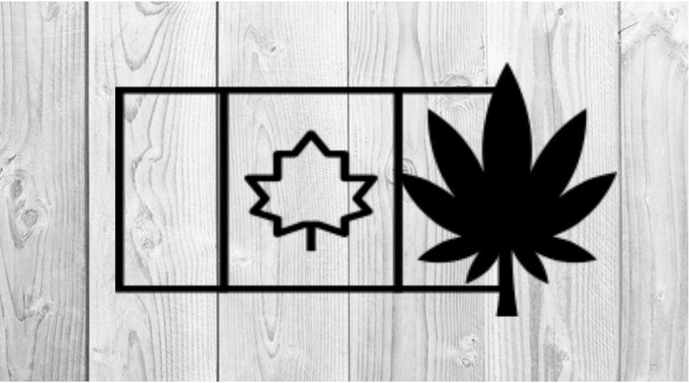 Cannabis Aktien Kanada